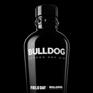Field Day x Bulldog Gin